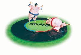 Faire un combat de sumo pour un enterrement de vie de célibataire