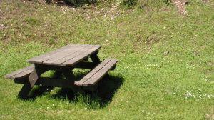 UN gage gentil pour les futurs mariés: organiser un picnic...